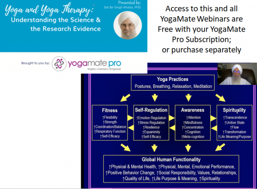 Yoga & Yoga Therapy: Understanding the Science and the Research Evidence